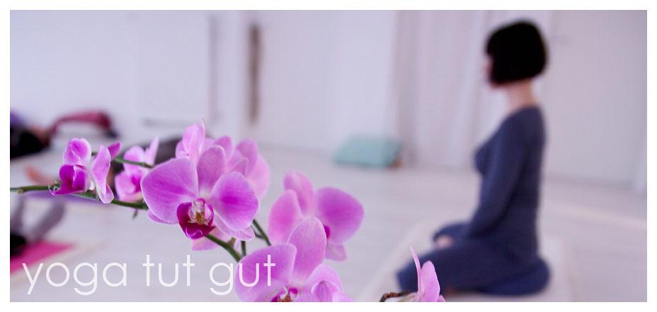 vini yoga Wunstorf - Kurse, Workshops ...